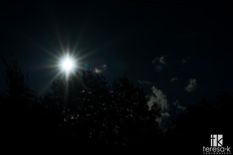 Sun Star in the winter by Teresa K photography