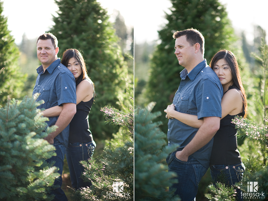 engagement images from daves christmas tree farm in northern california