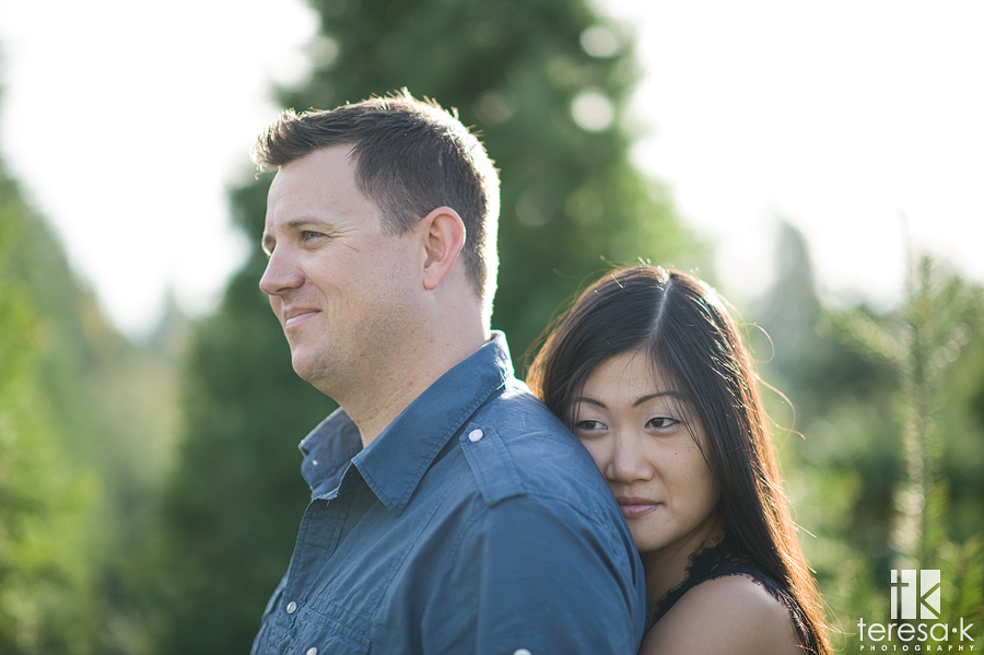 engagement session at Dave's Christmas tree farm in Placerville, California