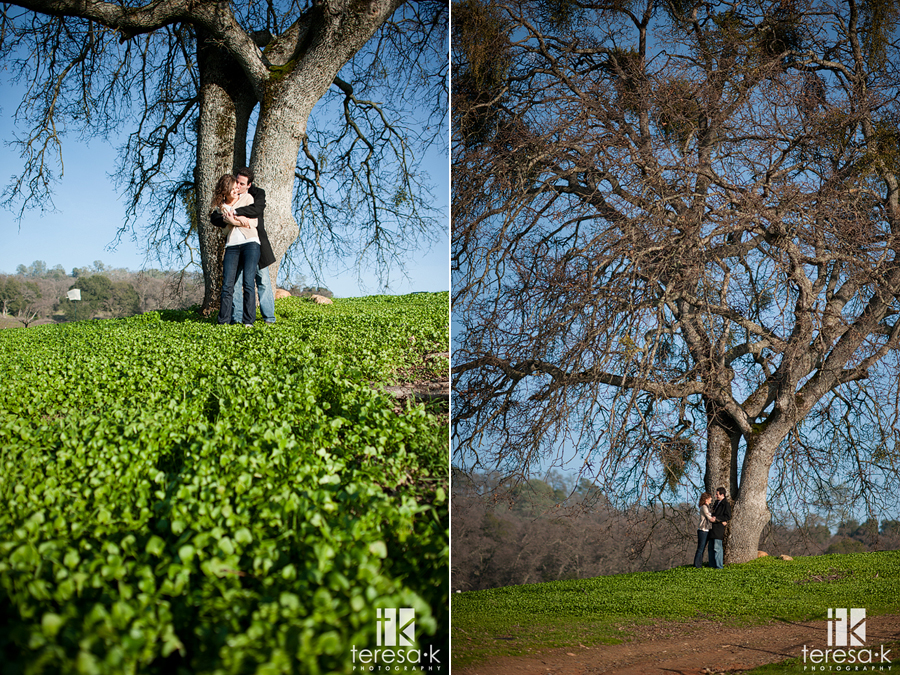 Mother lode winery engagement session at Montevina winery in Amador county.