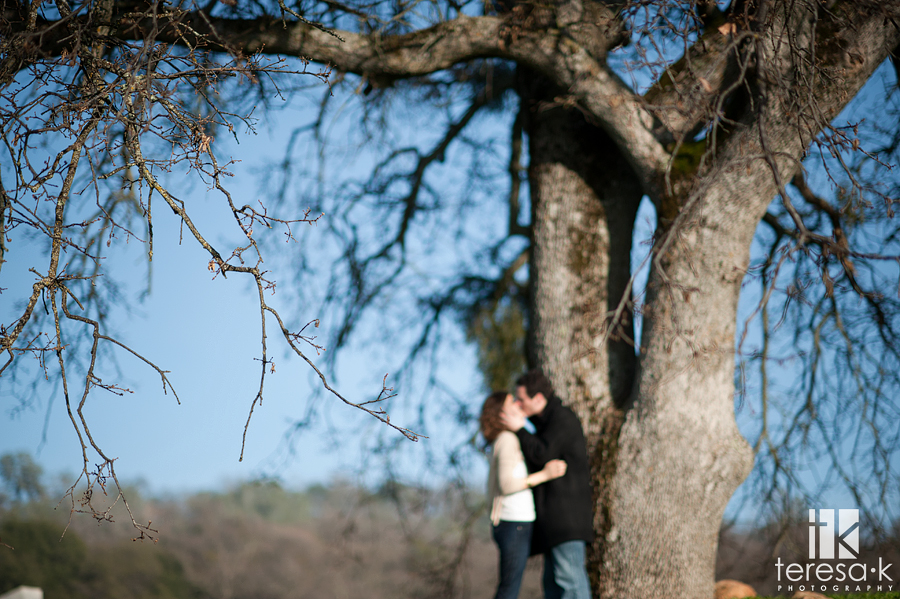 Amador county winery engagement session at Terra d'Oro winery in Amador county