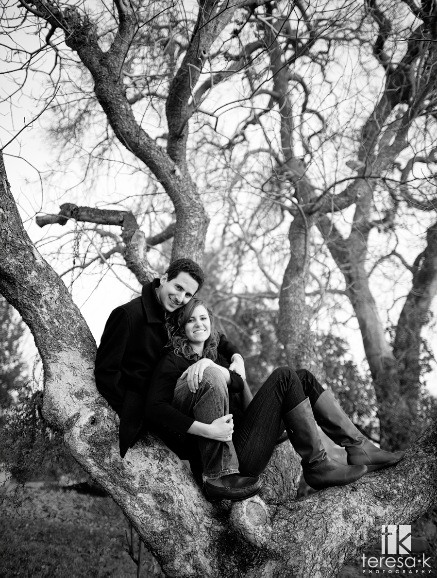 Amador county winery engagement session at Montevina winery in Amador county.