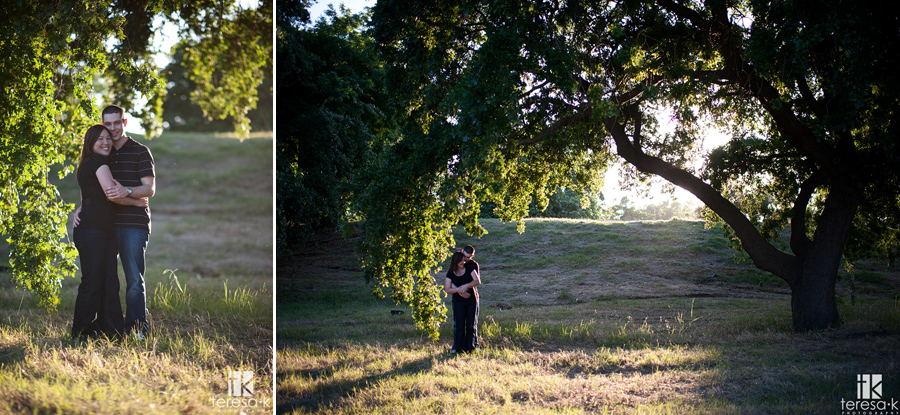 outdoor engagement photo under a tree in beautiful afternoon light