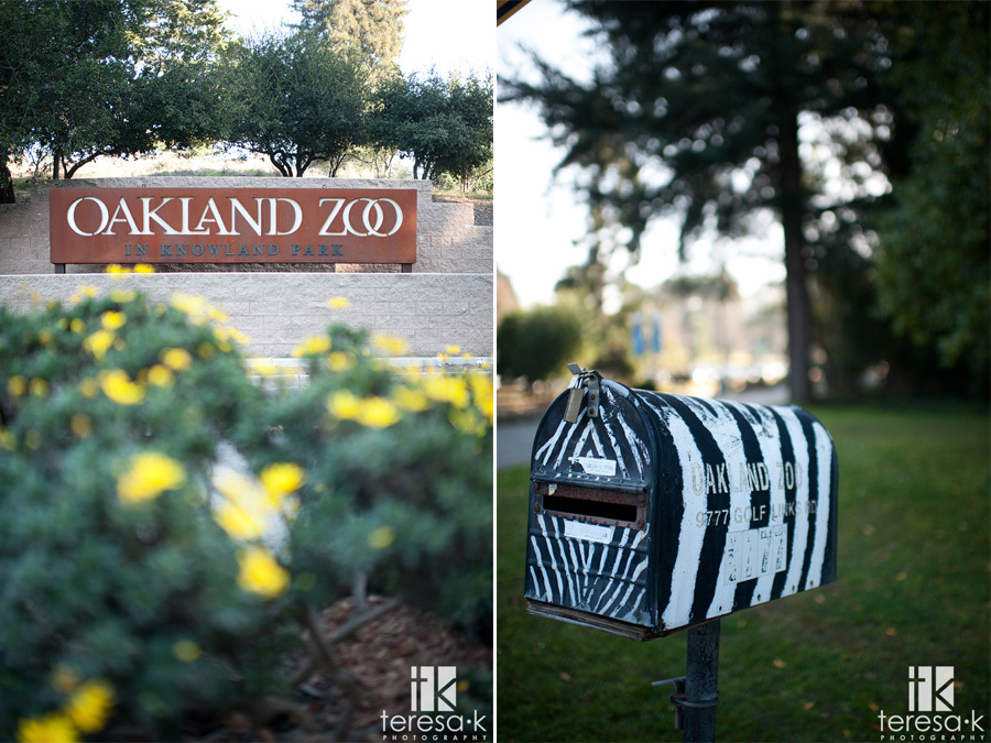 images of the front of the Oakland zoo