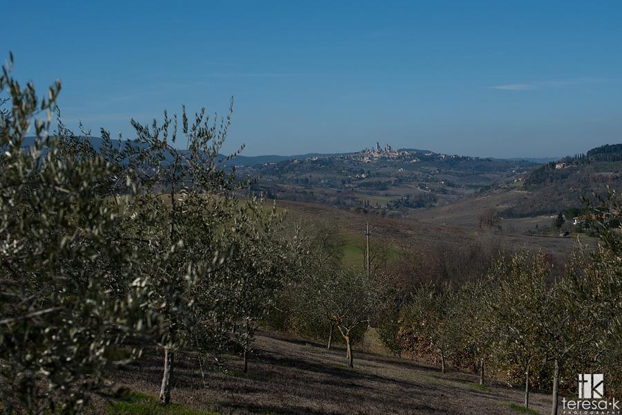 San Gimignano on the hillside