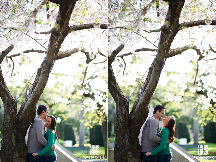 spring engagement in downtown Sacramento