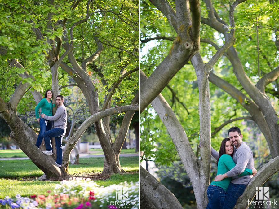 engagement pictures with trees