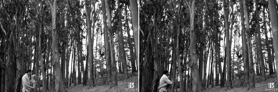San Francisco Engagement session at the presidio 011