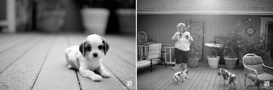 family documentary style photos 004