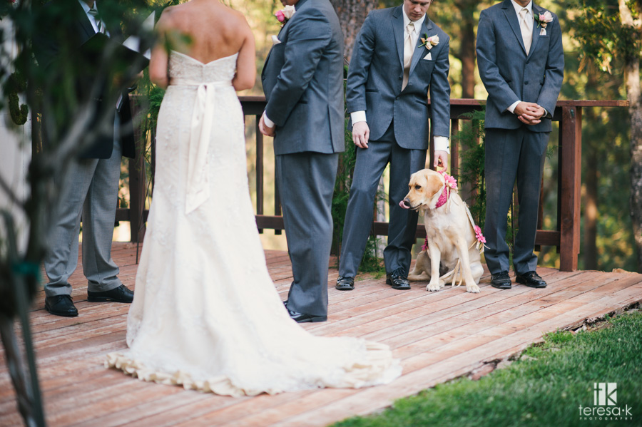Gold Hill Winery Wedding 022