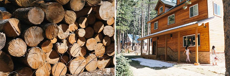 Edgewood-Lake-Tahoe-Wedding-Images-03