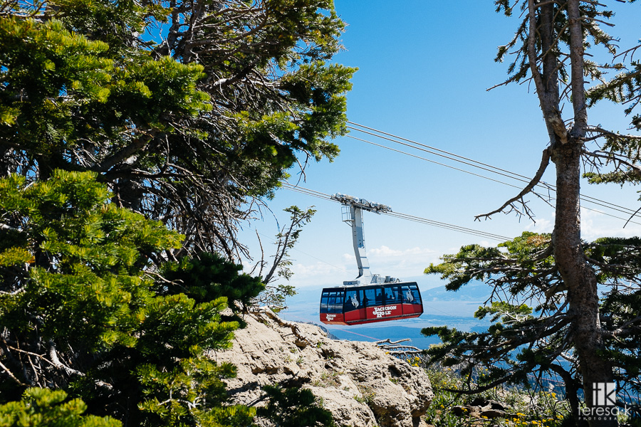 the tram to the top of Jackson hole