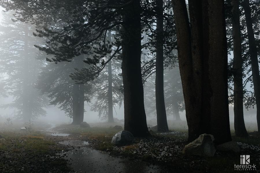 Folsom-to-Yosemite-19
