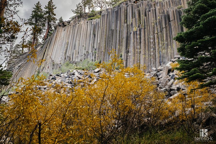Folsom-to-Yosemite-5