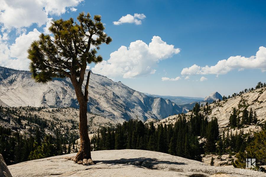Folsom-to-Yosemite-9