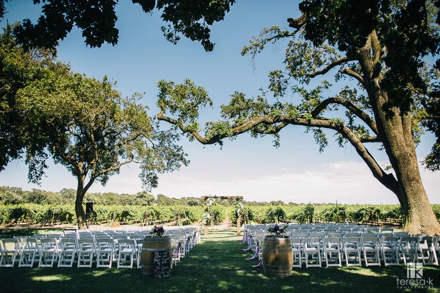 Clarksburg-Wedding-20